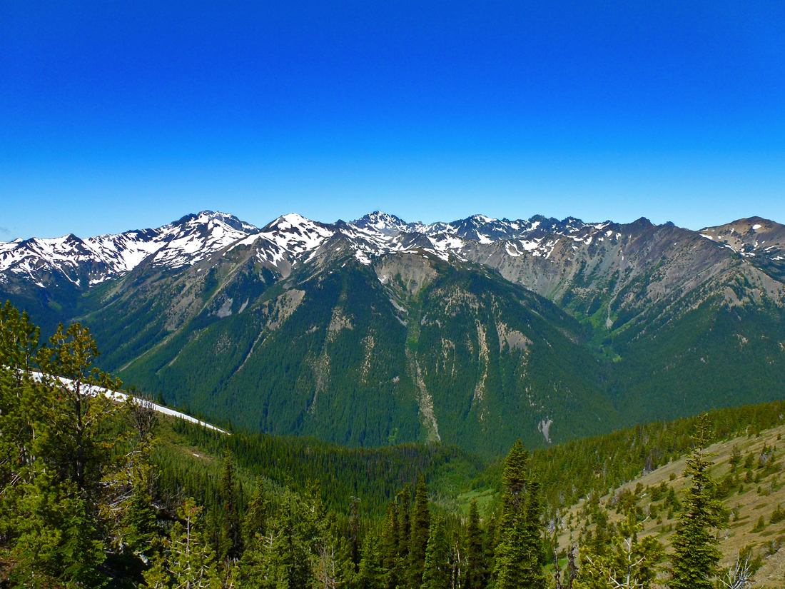 View form Marmot Pass across the Olympic Mountains